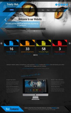 Trinity Cats Website Template
