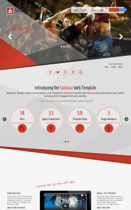 Santana Martial-arts Website Template