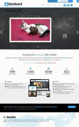 Blackboard Cats Website Template