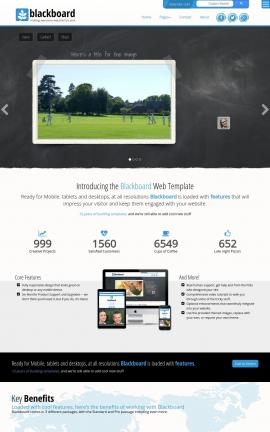 Blackboard Cricket Website Template