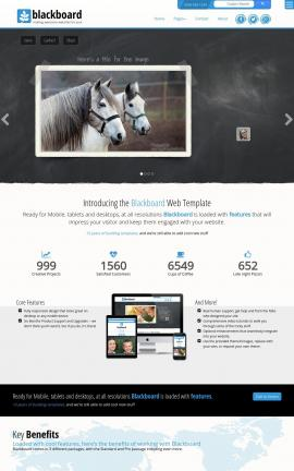 Blackboard Equestrian Website Template