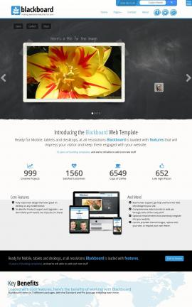 Blackboard Floral Website Template