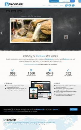 Blackboard Nature Website Template