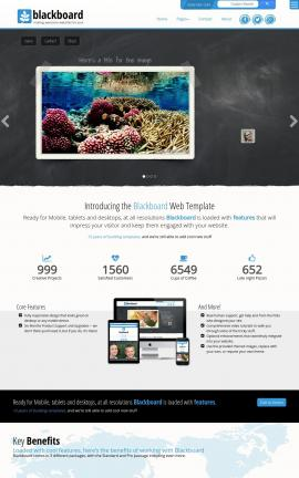Blackboard Scuba-diving Website Template