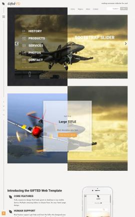 Gifted Aviation Website Template