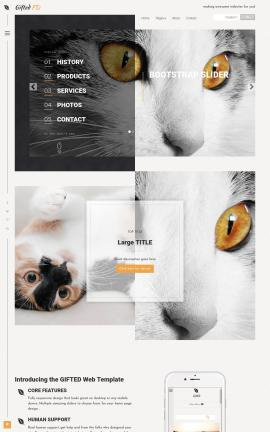 Gifted Cats Website Template