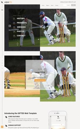 Gifted Cricket Website Template