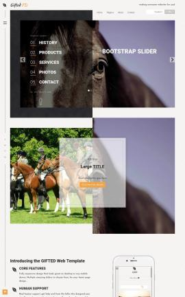 Gifted Equestrian Website Template