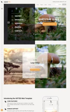 Gifted Nature Website Template