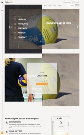 Gifted Volleyball Website Template