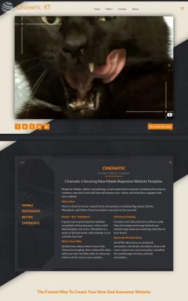 Cinematic Cats Website Template