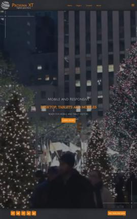 Proxima Christmas Website Template