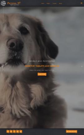Proxima Dogs Website Template