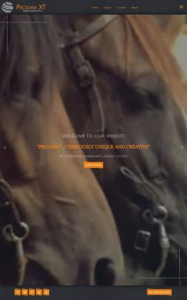 Proxima Equestrian Website Template