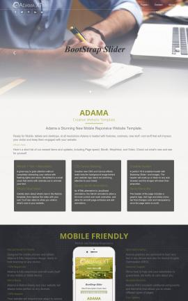 Adama Accounting FP2003 Template
