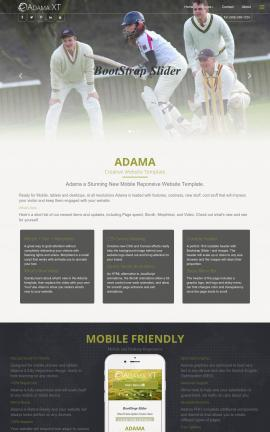 Adama Cricket FP2003 Template