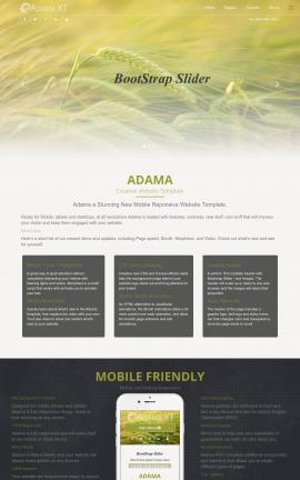 i3dTHEMES Adama Dreamweaver Website Templates Screenshot