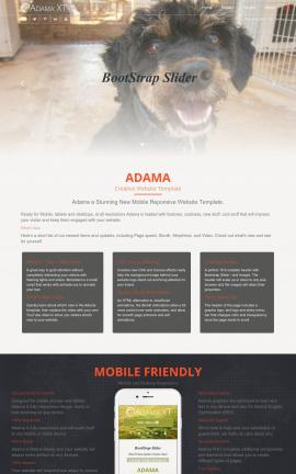 Adama Animal-shelter Website Template