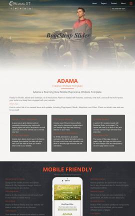 Adama Automobile Website Template