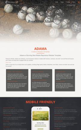 Adama Baseball Website Template