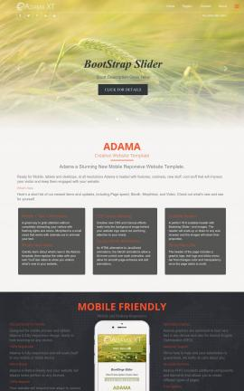 Adama Basketball Website Template