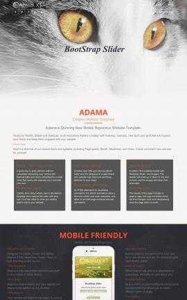 Adama Cats Website Template