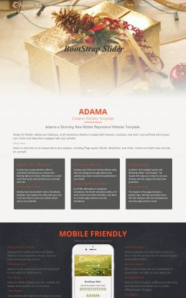 Adama Christmas Website Template