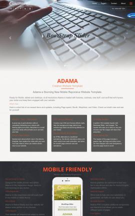Adama Computers Website Template