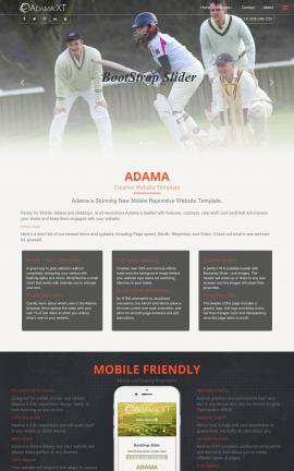 Adama Cricket Website Template