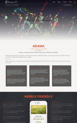 Adama Dance Website Template