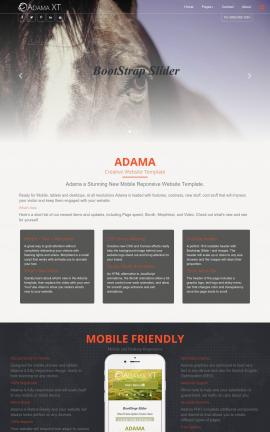Adama Equestrian Website Template