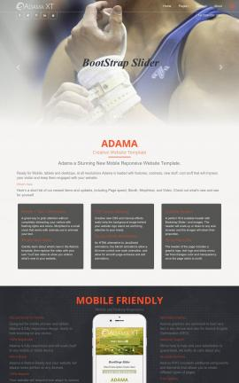 Adama Gymnastics Website Template