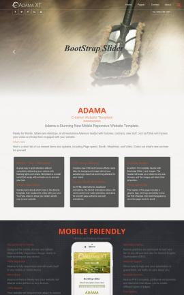 Adama Janitorial Website Template