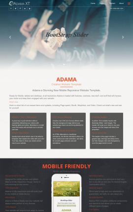 Adama Music Website Template