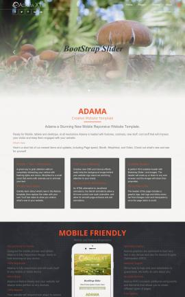 Adama Nature Website Template
