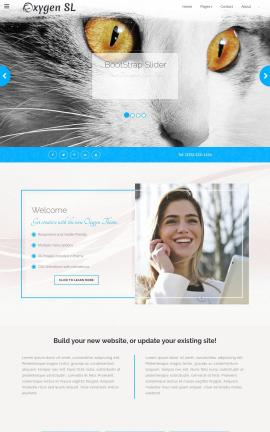 Oxygen Cats Website Template