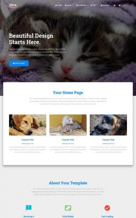 Ultra Animal-shelter Website Template