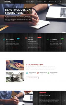Mobility Accounting Website Template