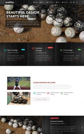 Mobility Baseball Website Template