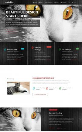 Mobility Cats Website Template