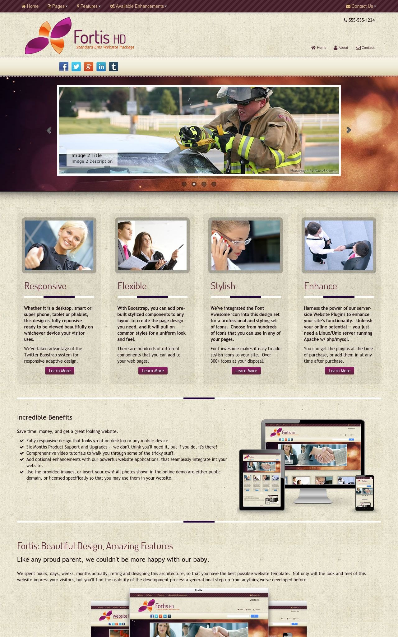 Ems Wordpress Themes