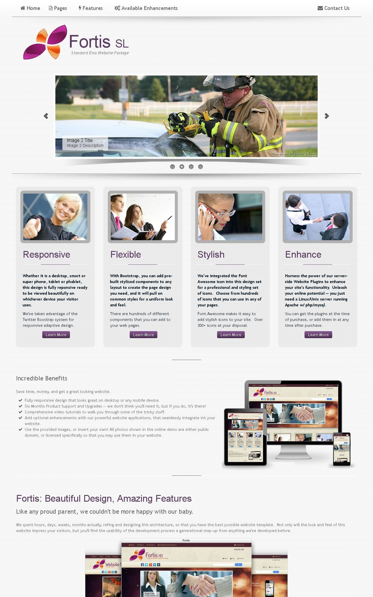 Desktop: Ems Web Template