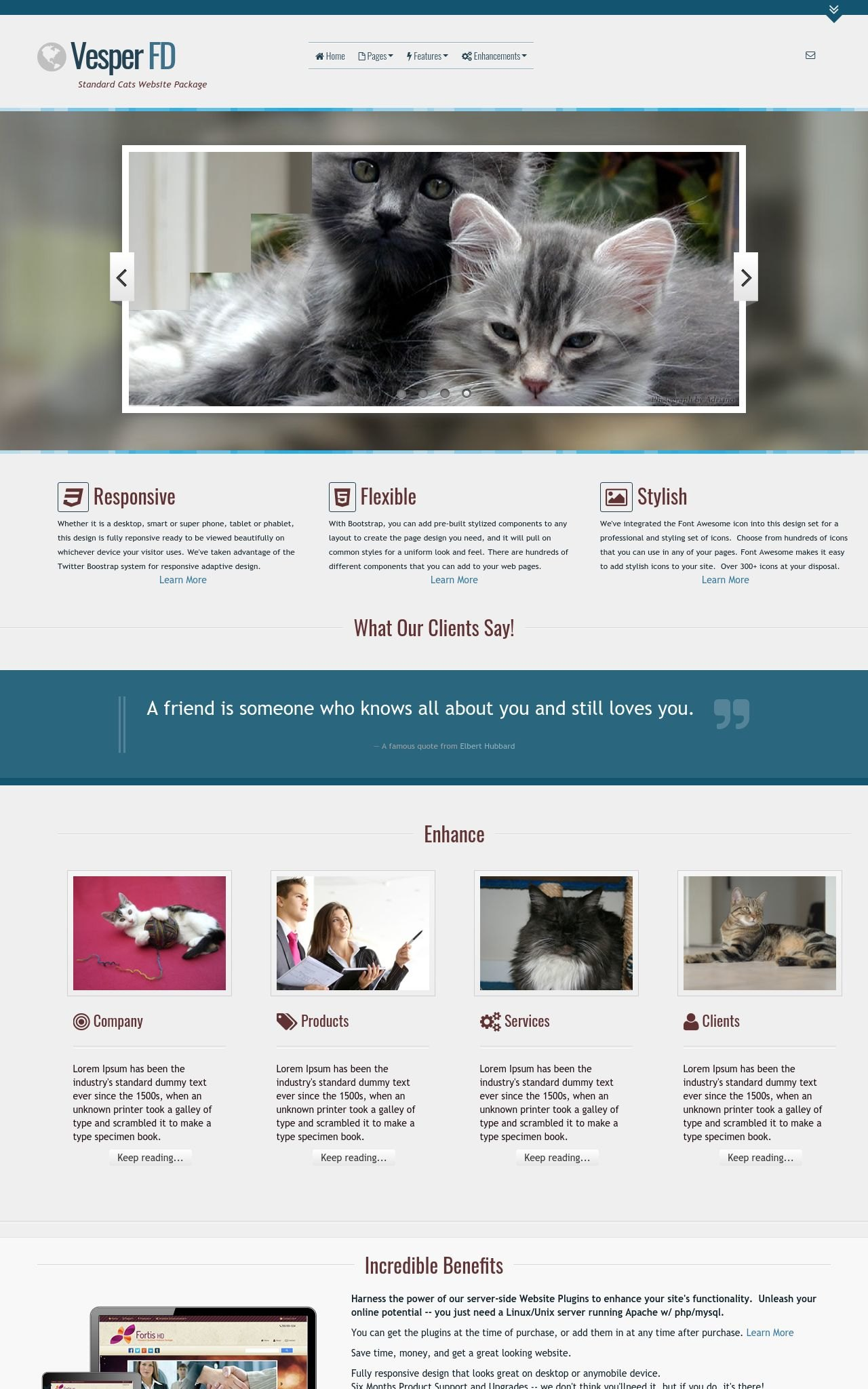 Tablet: Cats Wordpress Theme