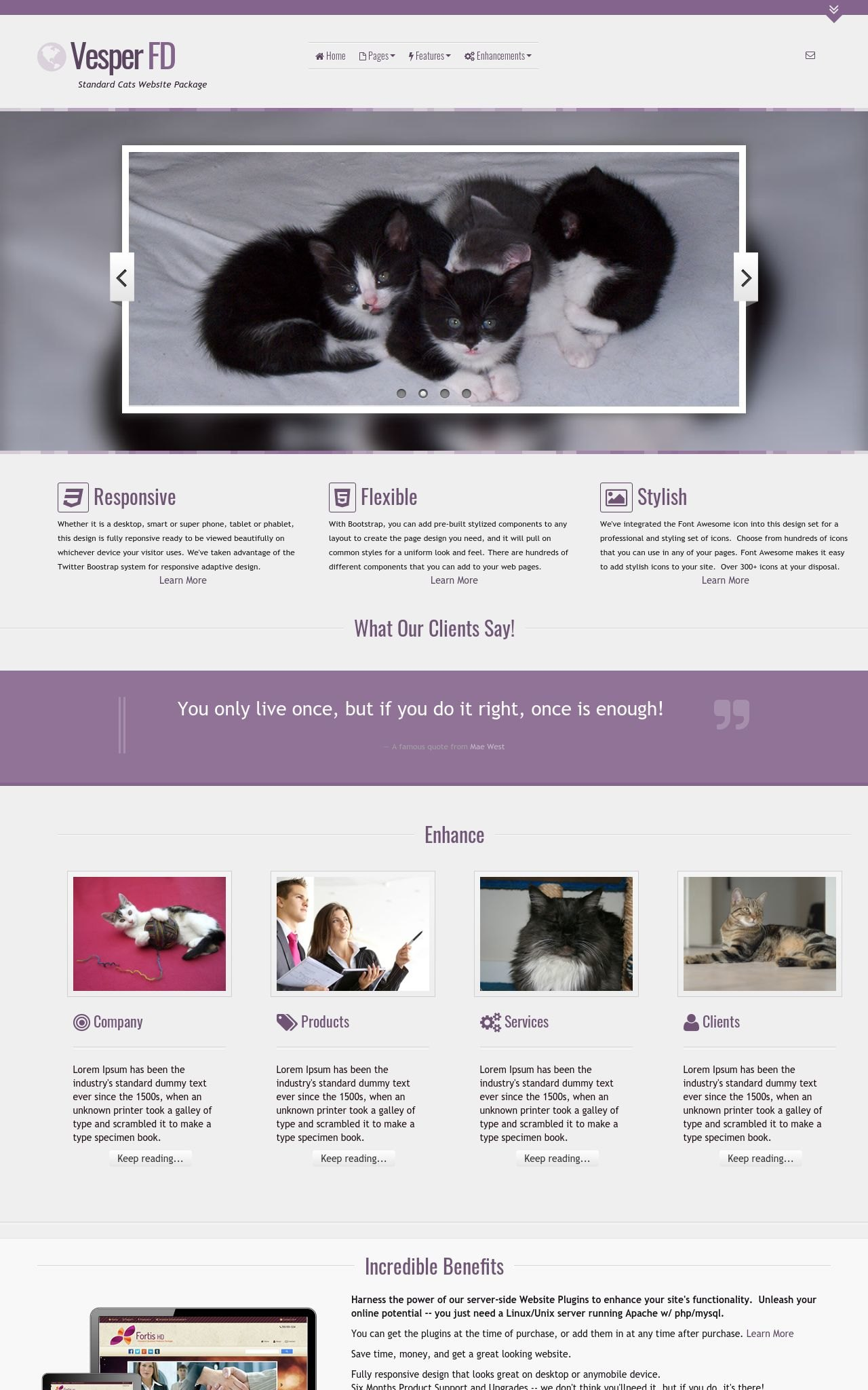 Cats Wordpress Themes