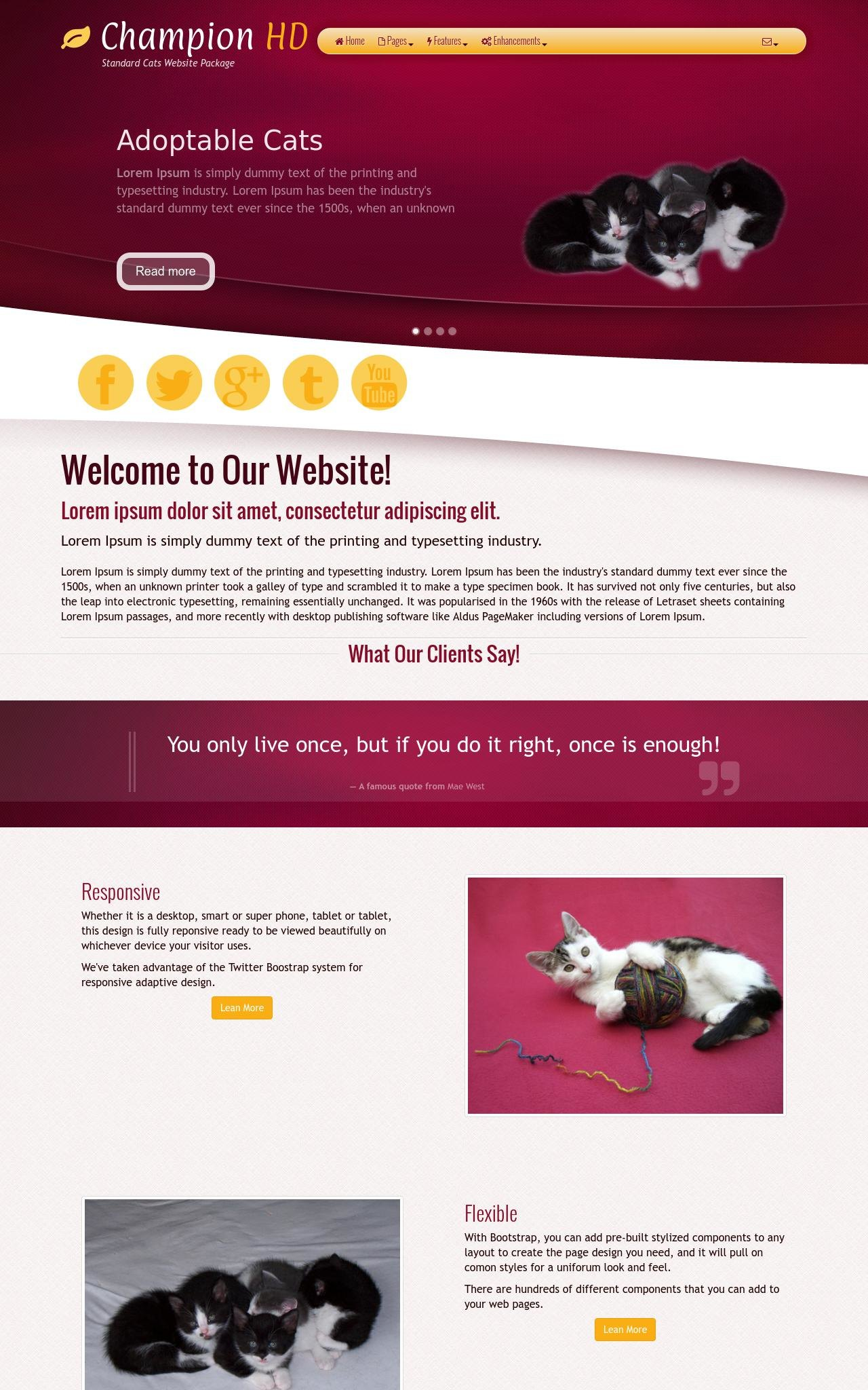 Cats Web Templates