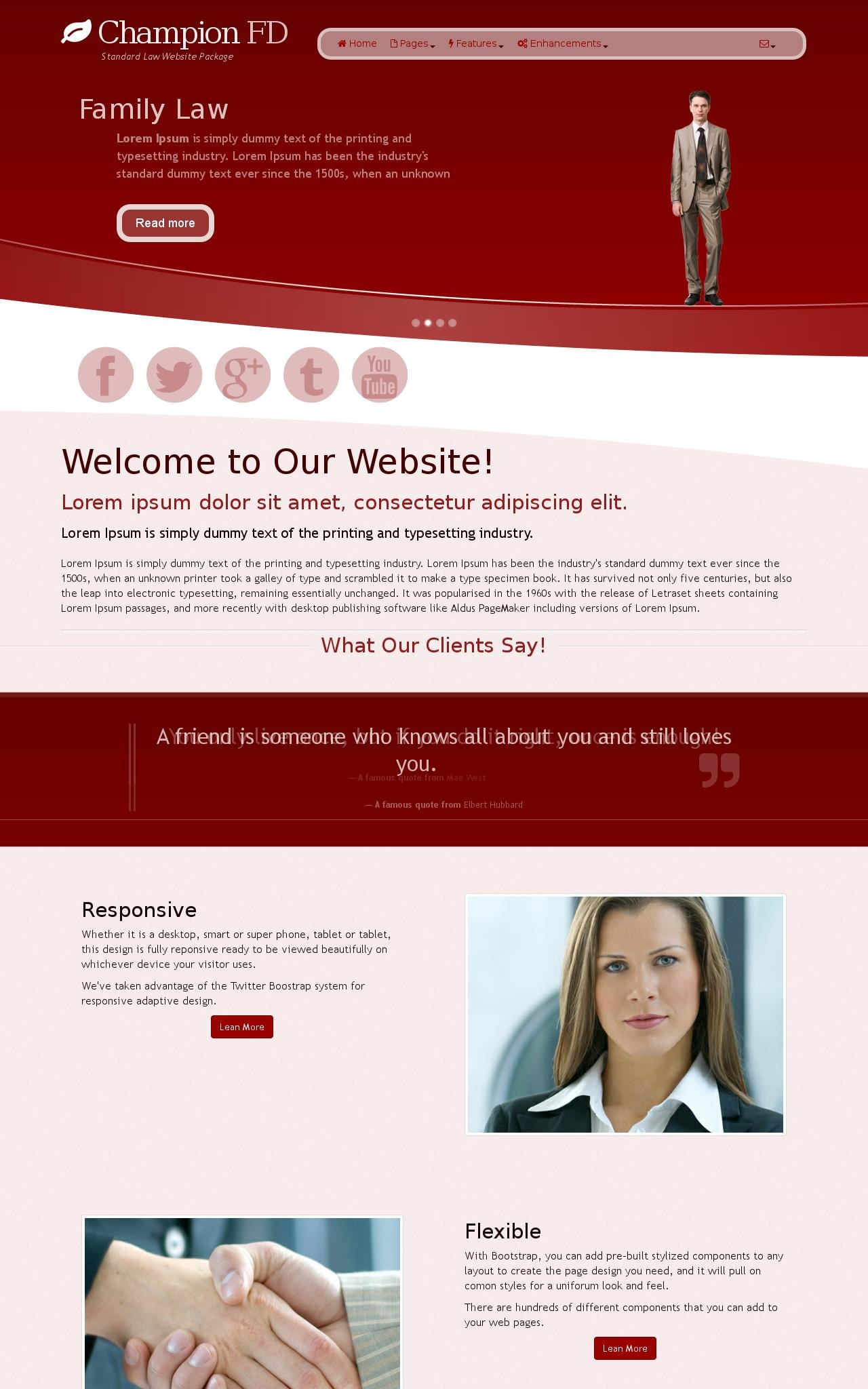 Law Wordpress Themes