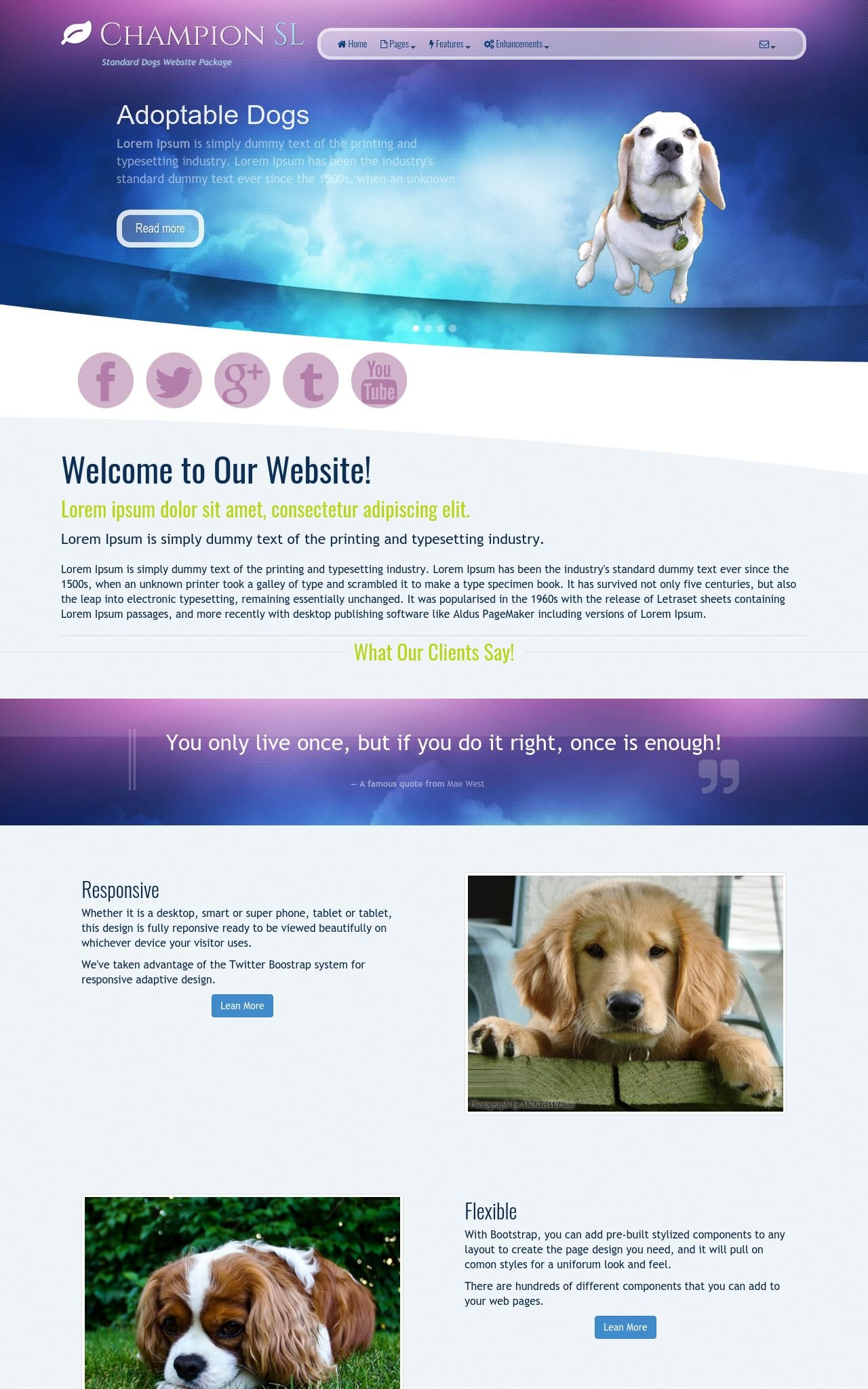 Dogs Wordpress Themes