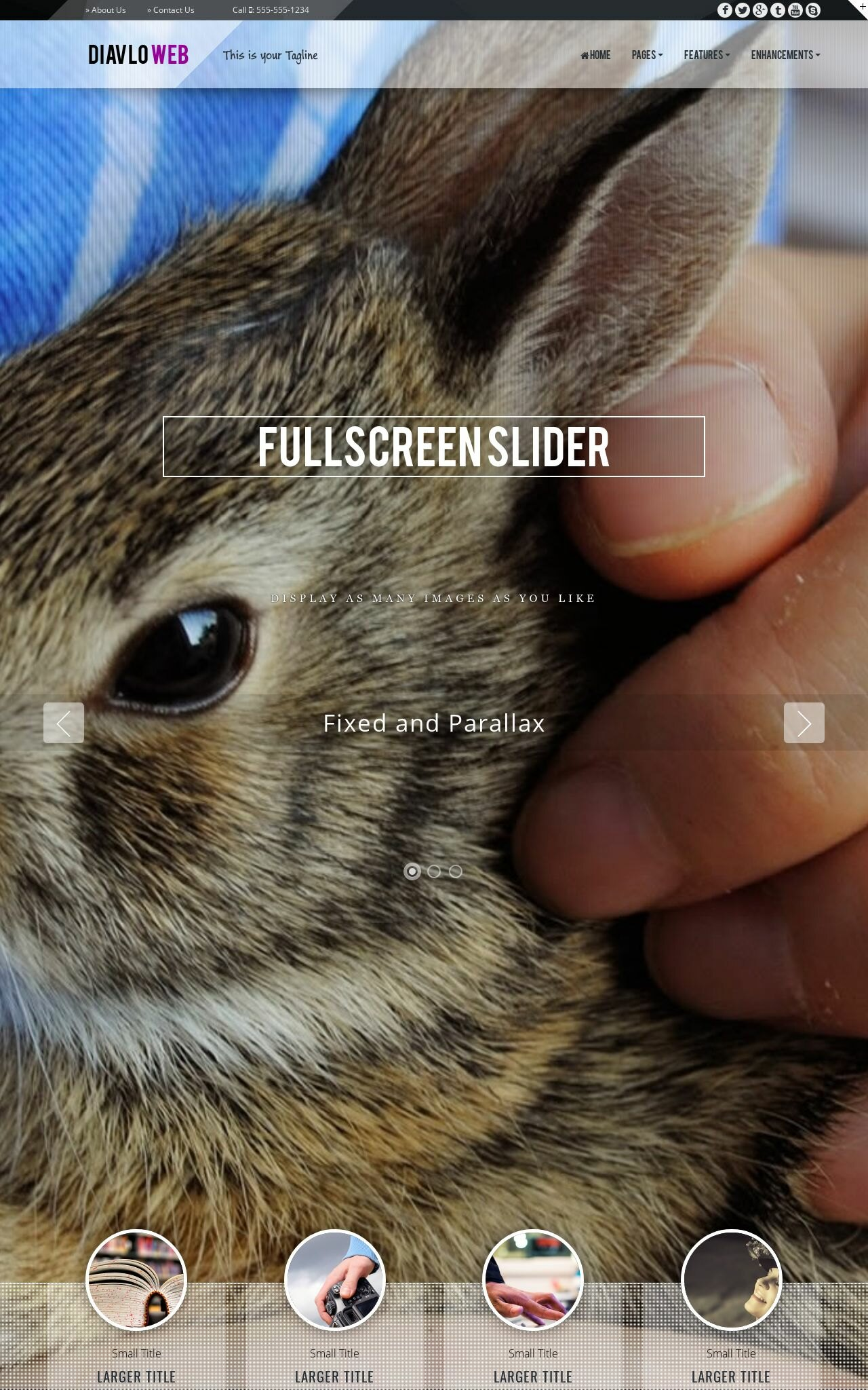 Pet-store Dreamweaver Templates